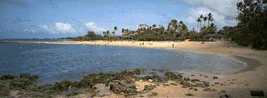 turtle bay north shore oahu